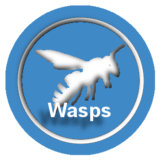 waspbut